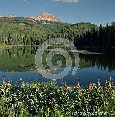 Free Woods Lake Stock Photos - 12568233