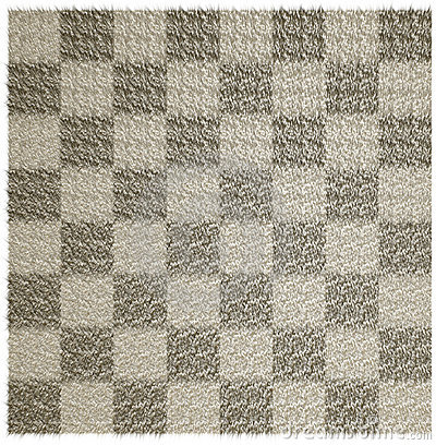 Wool blanket in the checkered