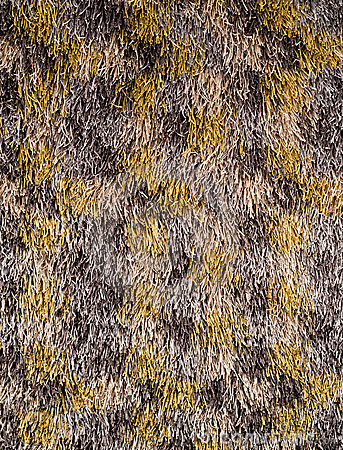 Wool carpet texture