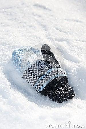 Woolen children glove