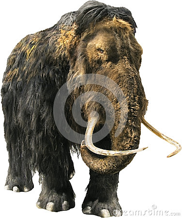 Free Woolly Mammoth Royalty Free Stock Photography - 47151897