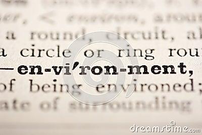 Word environment