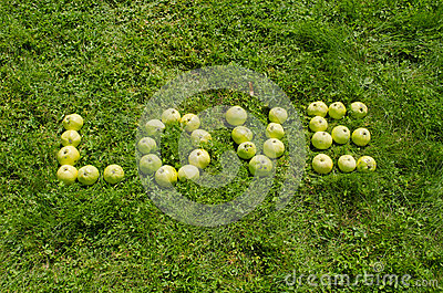 Word love of green apple on garden lawn