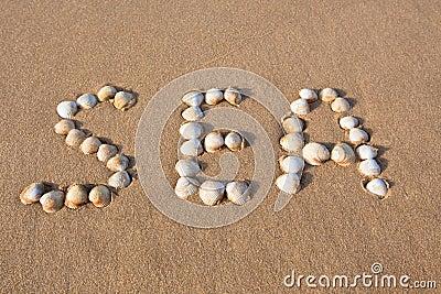 Word sea shell written on beach sand