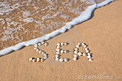 Word sea shell written on beach sand