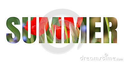 word summer stock photo   image 55945026
