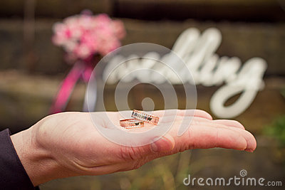 Word wedding, bouquet and groom s hand with rings