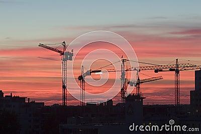 Working Cranes