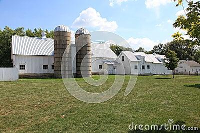Working farm with twin silos
