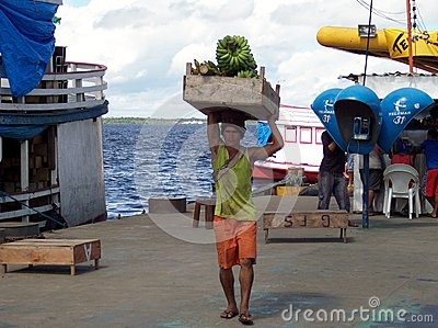 Man Working carrying bananas Editorial Photo