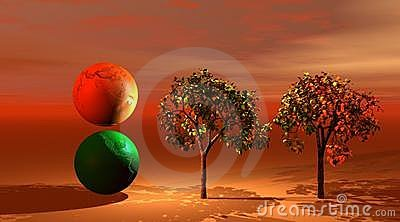 World ans trees