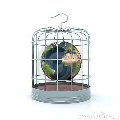 World inside the birdcage
