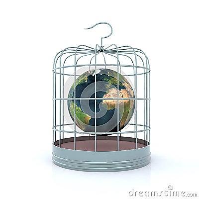 World inside the birdcage