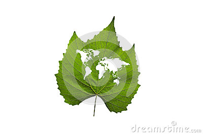 World map on a green leaf