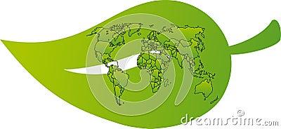 World map on a leaf