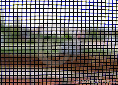 World through  mosquito net no.1
