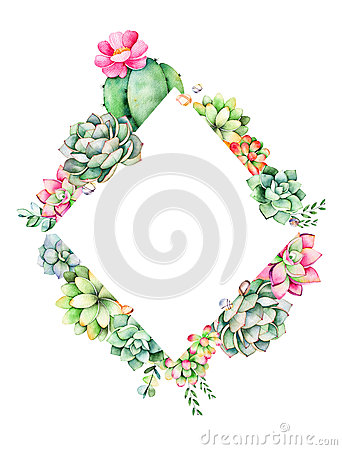 Free World Of Succulents And Cactus Collection. Royalty Free Stock Photos - 87986518