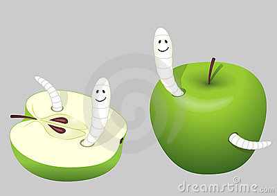 Worm-eaten apple
