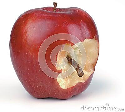 Free Wormy Apple Royalty Free Stock Photo - 968175