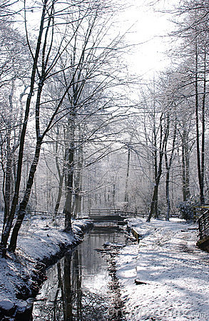 Free Worsley Woods In Winter Stock Photography - 607962