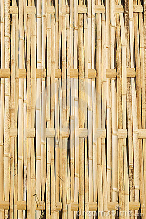 Woven Bamboo Fence Panel