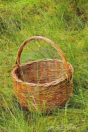 Woven basket in the grass