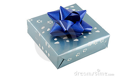 Wrapped present with bow