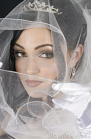 Wrapped in Tulle