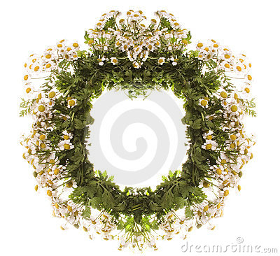 Free Wreath Royalty Free Stock Photography - 6034607