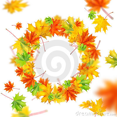 Free Wreath From Autumn Leaves Stock Photo - 16290190