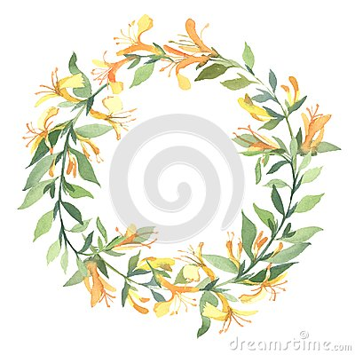 Free Wreath Of Watercolor Yellow Lonicera Flowers On White Background Royalty Free Stock Photos - 117019328