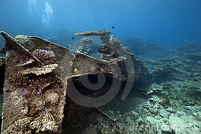 Wreck freighter Kormoran - sank in 1984 Tiran