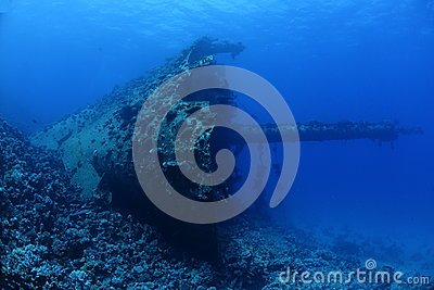 Wreck of the Ghiannis D  in the Red Sea, Egypt