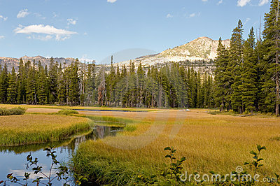 Wrights Lake landscape