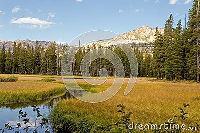 Wrights Lake landscape