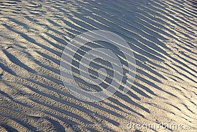 Wrinkles of desert