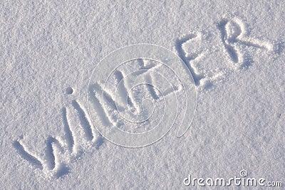 essay about winter dreams