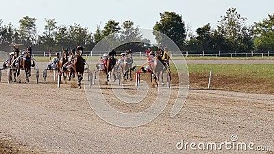 Wyścigi Konne Harness Racing Na Racecourse zbiory