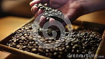 Wybierać najlepszy wyborowe kawowe fasole mleć zbiory