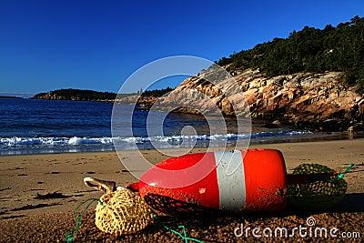 Wybrzeże Maine