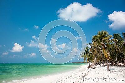 Wyspa tropikalny Raj