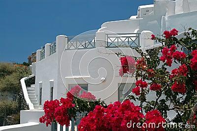 Wyspy greckie santorini scena
