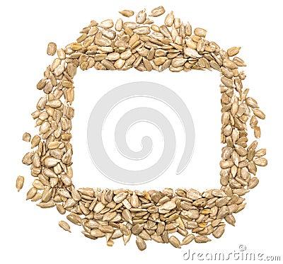 Wyłuszczeni słonecznikowi ziarna