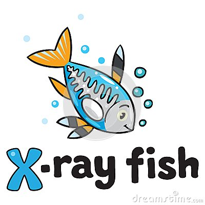 X-ray Fish For ABC. Alphabet X Stock Vector - Image: 47440433