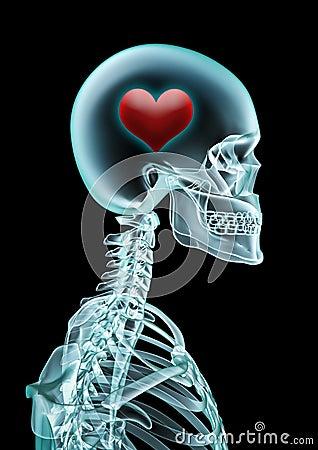 X-ray love