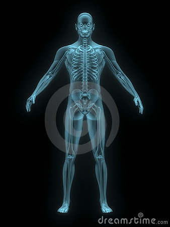 X-ray of man blue. front view.