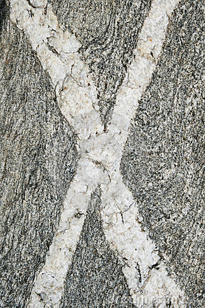 X rotsaders