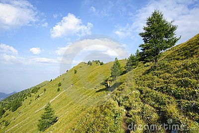 Xiaowutai Mountain scenery