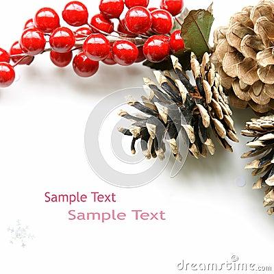 Free Xmas Christmas Tag Berries Stock Photography - 11949022