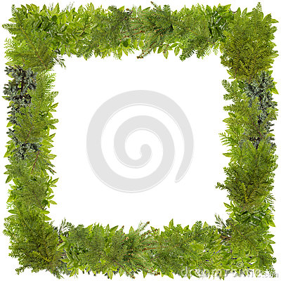 Free Xmas Fir Tree Photo Frame Royalty Free Stock Images - 67943309